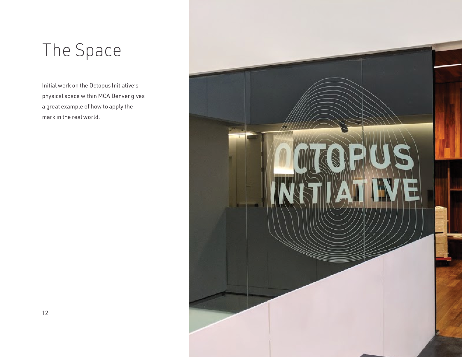 The Octopus Initiative Brand Guidelines - Page 12