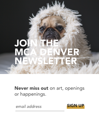 Call to Action: Newsletter Signup